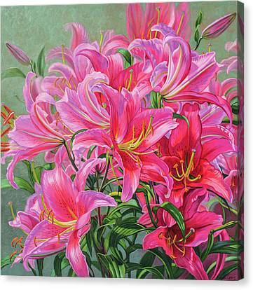 Hot Pink Asiatic Lilies Canvas Print by Fiona Craig