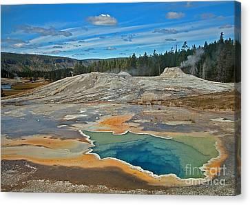 Hot Spring Canvas Print by Robert Pilkington