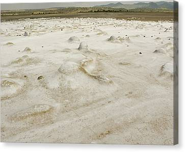 Chert Deposits Canvas Print by Patrick Kain