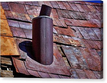 Hot Tin Roof Canvas Print by Kelley King