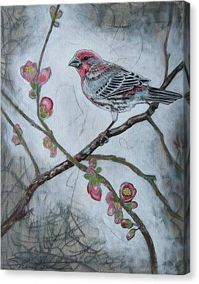 Canvas Print featuring the mixed media House Finch by Sheri Howe