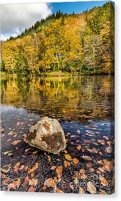 House In The Forest Canvas Print by Adrian Evans