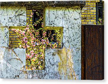House Near Webster And Clybourn V4 Dsc4055 Canvas Print by Raymond Kunst