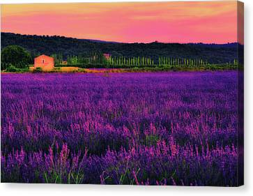 Abandoned House Canvas Print - House Of Dream by Midori Chan