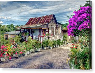 House Of Flowers 2 Canvas Print