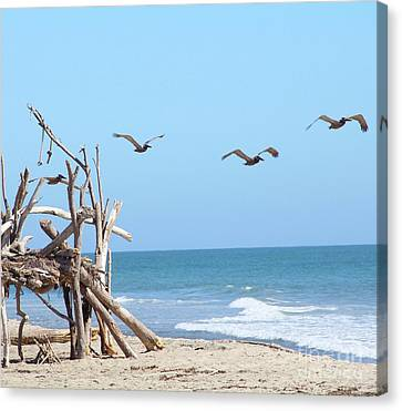 Canvas Print - House Of Sticks Trestles Beach California by Linda Queally