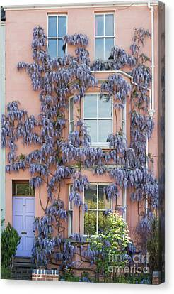 House Of Wisteria Canvas Print