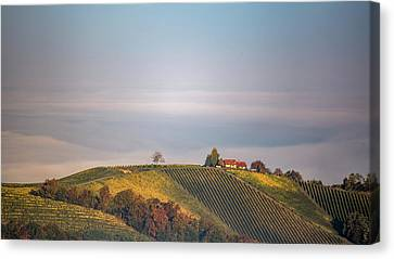 House On Top Of The Hill Canvas Print by Davorin Mance