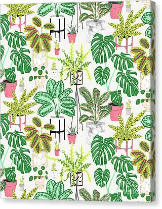 House Plants Canvas Print by Jacqueline Colley