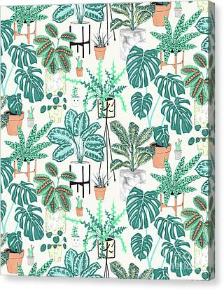 House Plants Teal Canvas Print by Jacqueline Colley