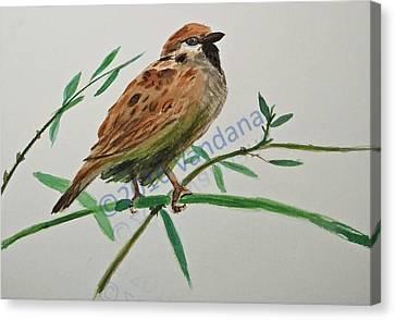 House Sparrow Canvas Print by Ranju alias Vandana Kumar