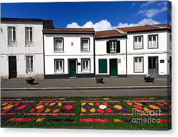 Houses In The Azores Canvas Print by Gaspar Avila