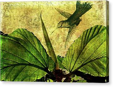 Canvas Print featuring the digital art Hover by Margaret Hormann Bfa