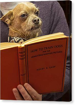 How To Train Dogs Canvas Print by Mitch Spence