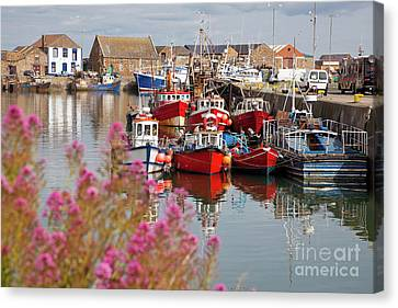 Howth Harbour Canvas Print by Gabriela Insuratelu
