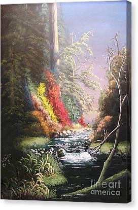 Huckleberry Creek Canvas Print by John Wise