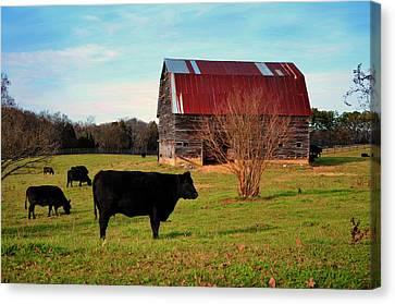 Huffacker Farm Canvas Print by Paul Mashburn