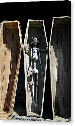 Hulett Wyoming Mr Bones Catching Some Sun Canvas Print by Thomas Woolworth