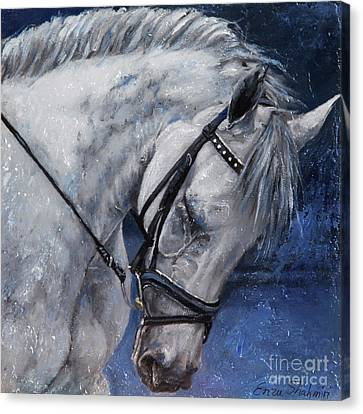 Humble Beauty Canvas Print