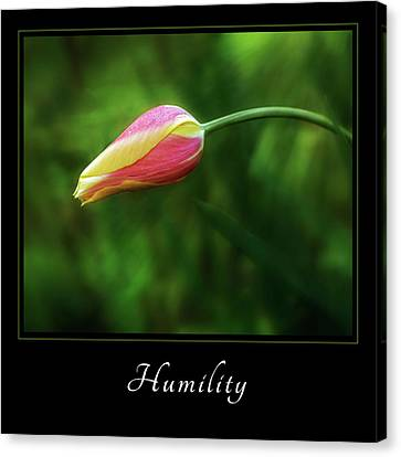 Canvas Print featuring the photograph Humility 1 by Mary Jo Allen