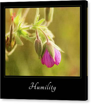 Canvas Print featuring the photograph Humility 3 by Mary Jo Allen
