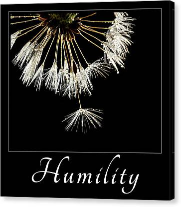 Canvas Print featuring the photograph Humility by Mary Jo Allen