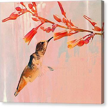 Hummer Art Canvas Print by Fraida Gutovich