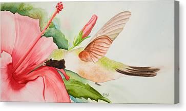 Hummin Canvas Print