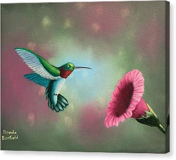 Humming Bird Feeding Canvas Print