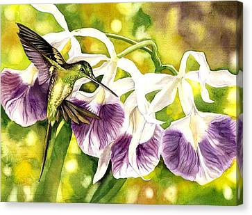 Humming Bird With Orchids Canvas Print by Alfred Ng