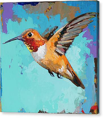 Hummingbird #11 Canvas Print by David Palmer