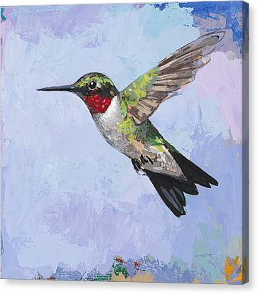Hummingbird #3 Canvas Print by David Palmer