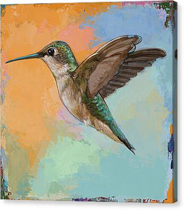 Hummingbird #5 Canvas Print by David Palmer
