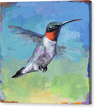 Hummingbird #8 Canvas Print by David Palmer