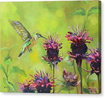 Hummingbird And Bee Balm Canvas Print