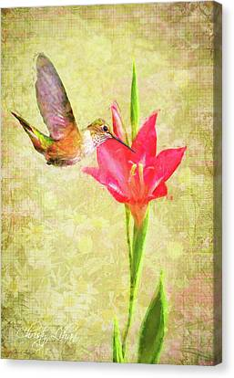 Canvas Print featuring the digital art Hummingbird And Flower by Christina Lihani