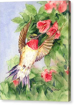 Hummingbird And Nectar Canvas Print