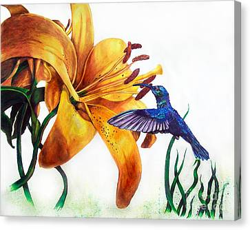 Hummingbird And Yellow Flower Canvas Print