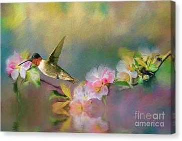 Kathy Rinker Canvas Print - Hummingbird by Kathleen Rinker