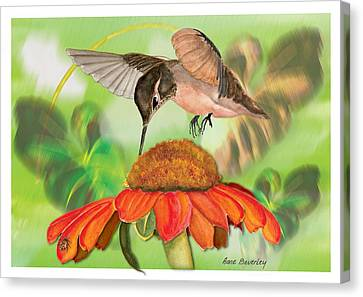 Canvas Print featuring the painting Hummingbird On Flower by Anne Beverley-Stamps