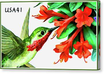 Hummingbird Trumpet And Calliope Hummingbird Canvas Print by Lanjee Chee