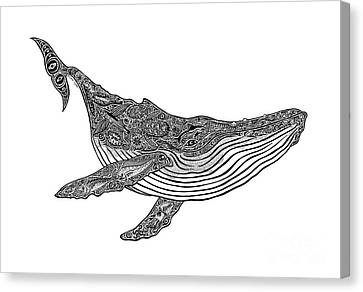 Humpback Canvas Print by Carol Lynne