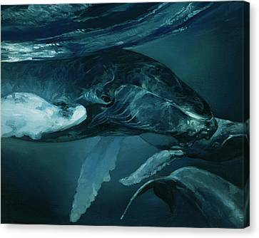 Monotone Canvas Print - Humpback Whale V by Heather Theurer