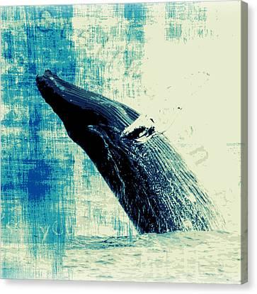 Humpback Whale V3 Canvas Print by Brandi Fitzgerald