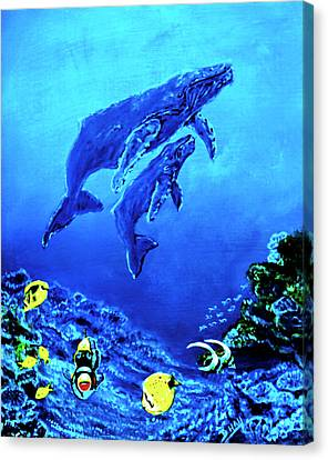 Humpback Whales Hawaii An Reef #14 Canvas Print by Donald k Hall