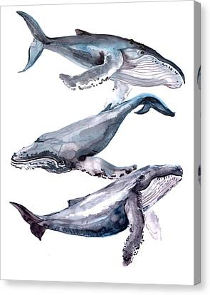 Humpback Whales Canvas Print by Suren Nersisyan