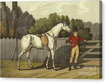 White Horses Canvas Print - Hunter by Henry Thomas Alken