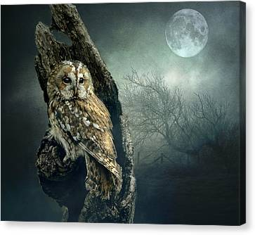 Hunter's Moon Canvas Print by Brian Tarr