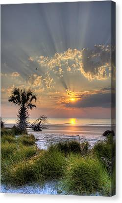 Hunting Island Sc Sunrise Palm Canvas Print by Dustin K Ryan