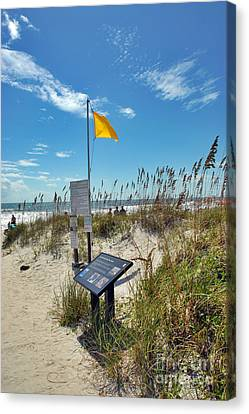 Huntington Beach Breezes Canvas Print